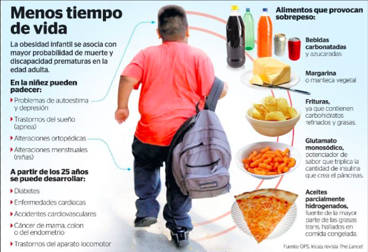 alimentos-que-provocan-sobrepeso